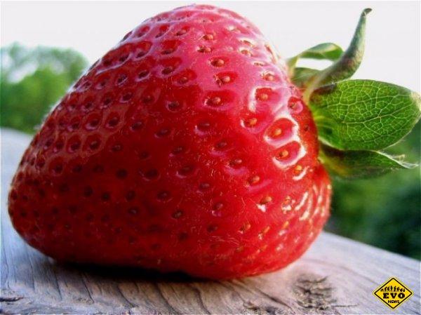 Клубника - единственная в мире ягода с семечками снаружи
