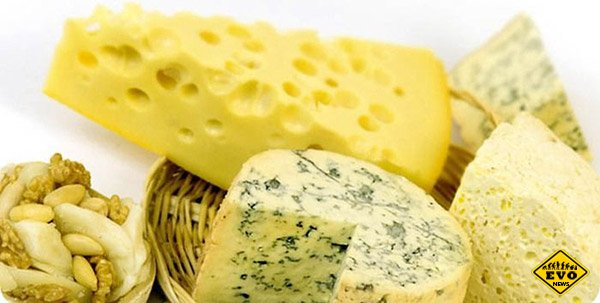 Подборка интересных факто о Сыре