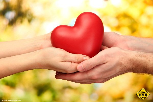 Швейцарские ученые назвали любовь «коротким замыканием» в мозгу
