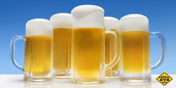 5 причин, по которым мужчинам лучше не злоупотреблять пивом