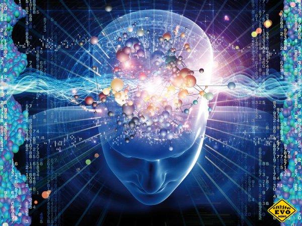 Советы по улучшению работы мозга