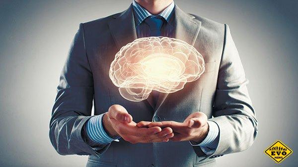 5 факторов, влияющих на человеческий интеллект