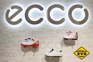 Створення бренду ЕССО