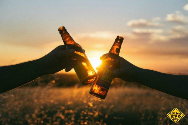 5 здоровых фактов о пиве, которые вас удивят