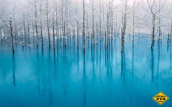 Голубой пруд Биэй на острове Хоккайдо