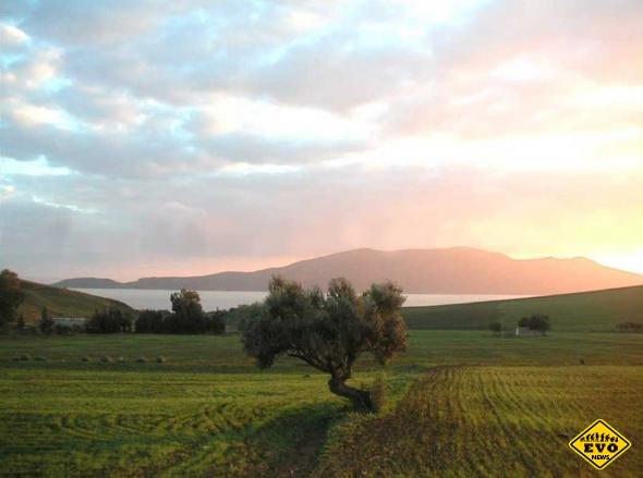Достопримечательности Туниса. Национальный парк Ишкёль