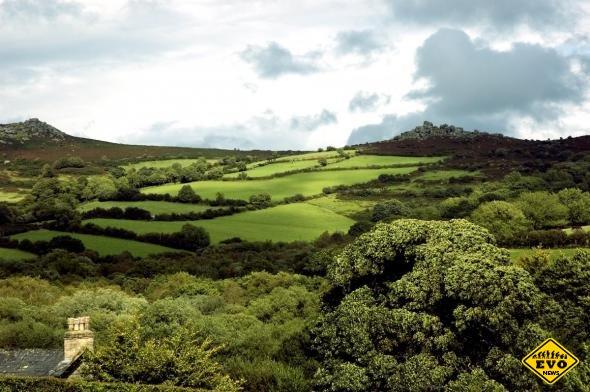 Дартмурский национальный парк – последняя болотистая пустошь Англии