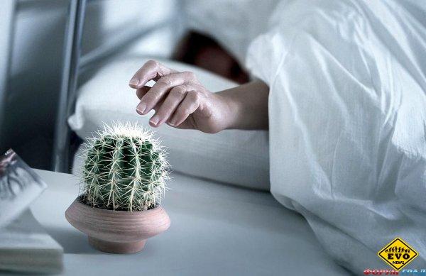 10 советов, о том как проснуться вовремя