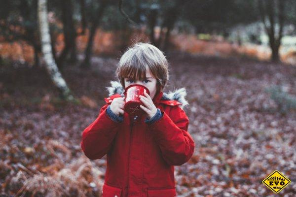 Гены или окружение: что влияет на интеллект ребенка