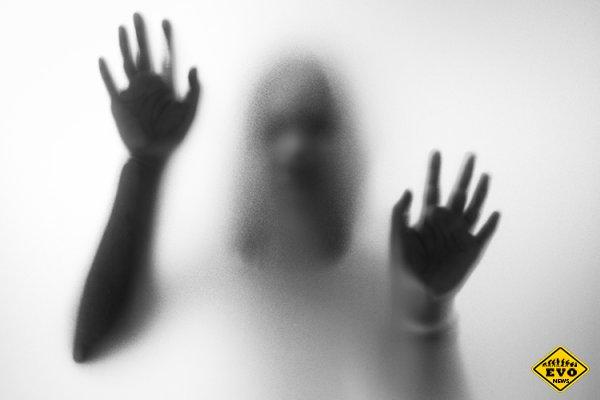 Люди боятся алкоголизма сильнее, чем психоза