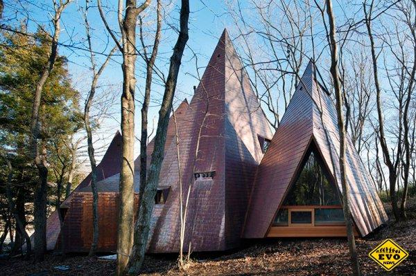 Лесной дом в Японии из объединенных пирамид
