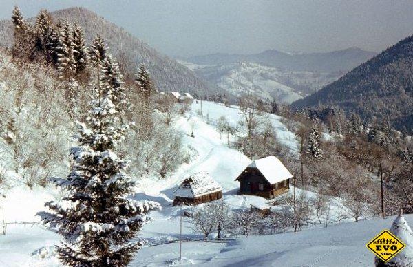 Лучшие идеи для зимнего отдыха в Карпатах