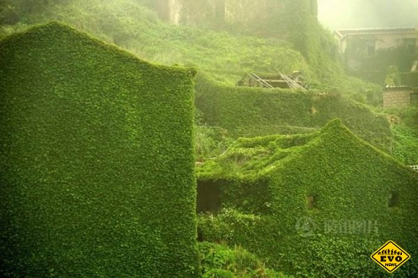 Деревня-призрак на острове Гохуи. Фотограф Юхонь Тань (Tang Yuhong)