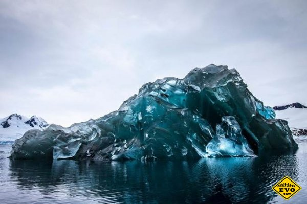 Потрясающая Антарктида. Фотограф Alex Cornell