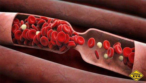 7 фактов о своей группе крови, которые никто не знает, но обязаны знать все