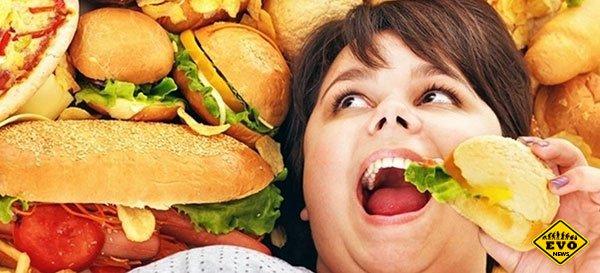 Почему все время хочется есть?