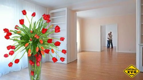 Как купить квартиру выгодно - полезные советы